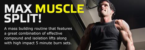 4 Day Maximum Mass Workout | Fitness | Scoop.it