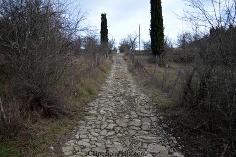 Into the Chianti | EcoTurismo e Mobilità Sostenibile | Scoop.it
