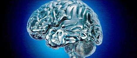 Aberkane - Pourquoi votre cerveau reste plus puissant qu'un ordinateur | Numérique & pédagogie | Scoop.it
