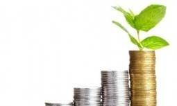 Slim beleggen: hou je emoties onder controle (deel 2) • FinVRIJ | LevensgenieterBlog | Scoop.it