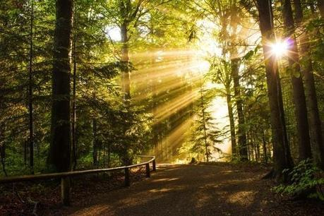 Où partir en octobre ? : les meilleures destinations d'automne !   tourism   Scoop.it
