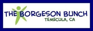 The Borgeson Bunch - My Classroom Website! | Technology in Education | Scoop.it