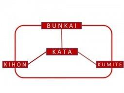 Blog Okinawa Te Karate Do Paris » Archives du blog » Le KATA : Le ... | Kamae do Blog | Scoop.it