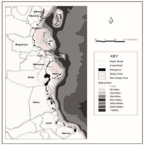 IOTN23-04-A STORY FROM THE FIELD: REMOVING MARINE DEBRIS TO RESTORE NESTING BEACH HABITAT IN KIPUMBWI VILLAGE, TANZANIA     Marine Litter Updates   Scoop.it