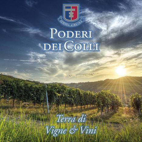 Wines and People of Le Marche: Poderi dei Colli, Montalto delle Marche | Wines and People | Scoop.it