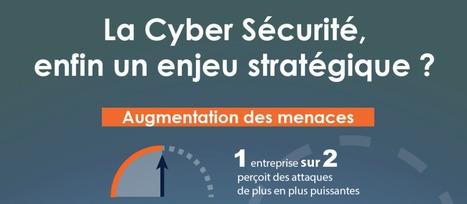 Cyber Sécurité France 2015 - Infographie | PAC – a CXP Company | Toute l'actualité de PAC | Scoop.it