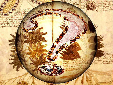 Manuscrit Voynich | Merveilles - Marvels | Scoop.it