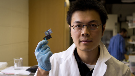 A 10-Cent Paper Sensor That Tests For Malaria And HIV | Serendipity Café | Scoop.it