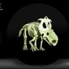 A Dinosaur-Themed Glow-in-the-Dark Coin by Royal Canadian Mint | Antiques & Vintage Collectibles | Scoop.it