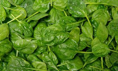6 Mood-Boosting Foods | Care2 Healthy Living | Healthy Food Habits | Scoop.it