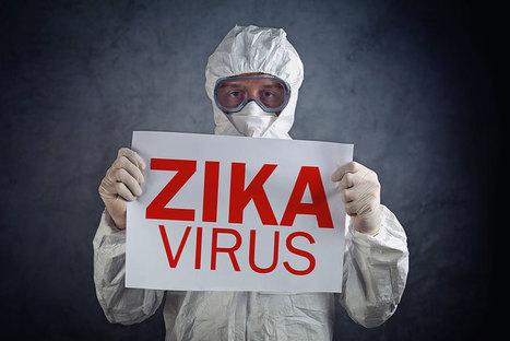 Pregnant Women in U.S. with Confirmed Zika Virus | Home and Garden Services | Scoop.it