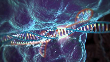 Genome Editing with CRISPR-Cas9 | leapmind | Scoop.it