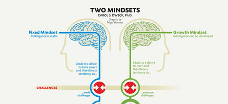 The Growth Mindset for Leaders | skills services | Scoop.it