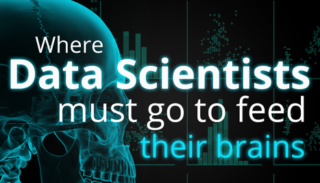 How to add Value to a Mature Data Science Practice | Information and Insights from Halo Business Intelligence | Scoop.it