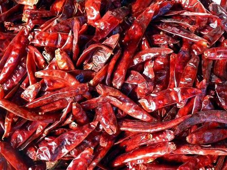 Origins of Domesticated Chili Pepper Found in Mexico | Aux origines | Scoop.it