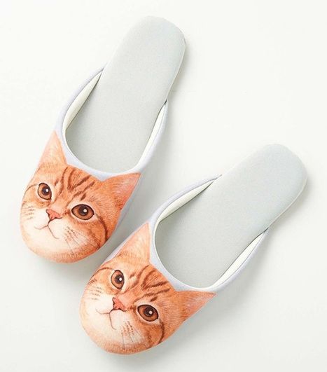 "Sneak around in cat feet with cute new ""soundless"" kitten slippers from Felisssimo 