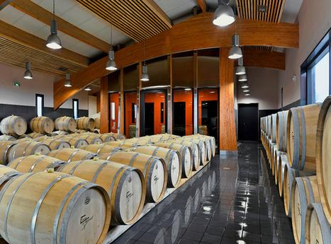 Treize tonneliers différents pour ses cuvées | Le Vin et + encore | Scoop.it