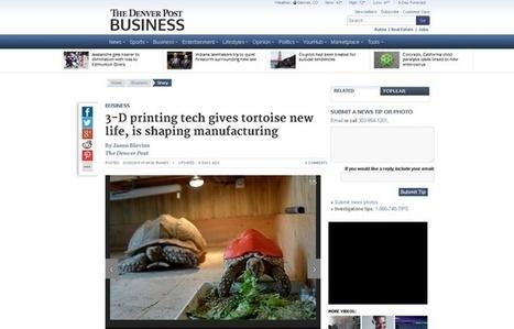 Etats-Unis: Grâce à sa carapace en 3D, la tortue Cléopâtre va recouvrer la santé | Biodiversité | Scoop.it