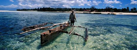 La richesse économique des océans dépend de leur bonne santé | Le flux d'Infogreen.lu | Scoop.it