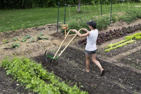 Bourse Laure Waridel : Agriculture urbaine à l'honneur avec le projet « Concordia City Farm School » - Nouvelles - Agriculture urbaine Montréal | Agriculture urbaine et rooftop | Scoop.it