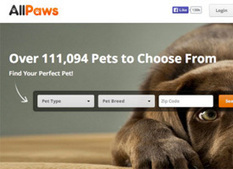 Nano Pets | Digital News | Scoop.it