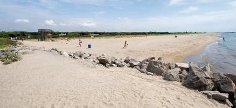 Les platges viladecanenques del Remolar i La Pineda les úniques de la demarcació amb el distintiu de Platges Verges | #territori | Scoop.it