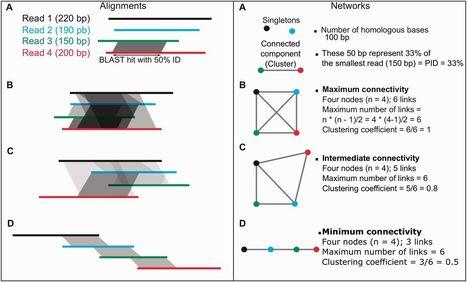 Studying Genome Heterogeneity within the Arbuscular Mycorrhizal Fungal Cytoplasm | Mycorrhizal fungal genomes | Scoop.it