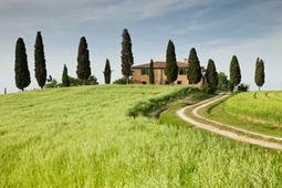 Promozioni per Strutture | Acconciature e Make Up Sposa Chianciano - Siena » Sam's | Scoop.it