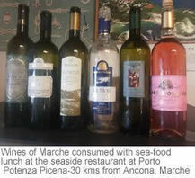 Verdicchio and other Wines of Le Marche | Wines and People | Scoop.it