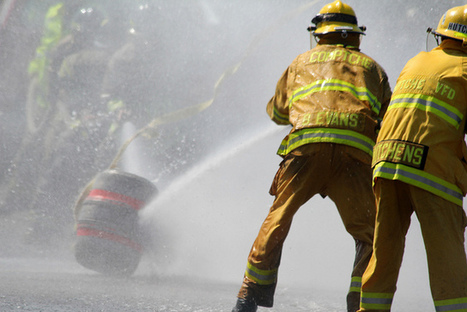 Drinking from the Nutrition Fire Hose: First Steps at Learning the Gluten-Free ... - A Sweet Life (blog) | @FoodMeditations Time | Scoop.it