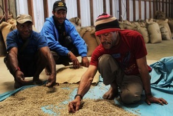 Papua New Guinea: Boosting Production of Some of the World's Best Coffee | Coffee News | Scoop.it