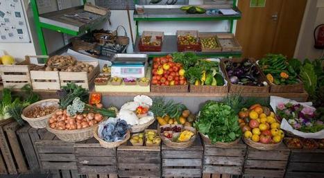 Le Potager du roi se réinvente avec l'agroécologie   Paris durable   Scoop.it