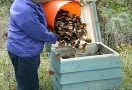Methods of Waste Disposal | Blue Bins | Scoop.it