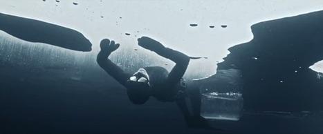 #VIDÉO. Nager sous la glace de l'#Arctique, ça vous tente? | Arctique et Antarctique | Scoop.it