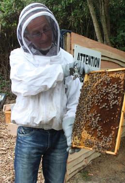 Un rucher communal au Domaine des Loges | Créativité et territoires | Scoop.it