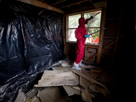 P contamination crisis could rival leaky homes disaster - National - NZ Herald News | Health Education Resources | Scoop.it