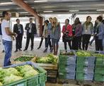 Quand les villes se reconnectent à l'agriculture - CIRAD | ville et jardin | Scoop.it