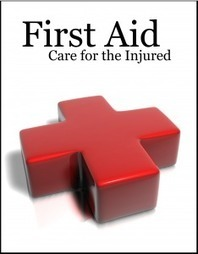 Online Standard First aid and CPR Training: Blended Learning Takes the Hassle out of First Aid Certification   Online Safety Training   Scoop.it