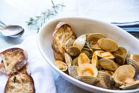 Le Marche Recipes: Vongole in Potacchio | Le Marche and Food | Scoop.it