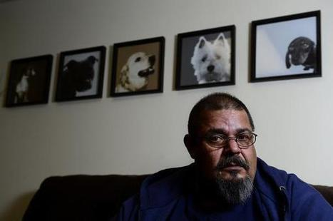Commerce City officer faces felony charge for shooting dog   stuff,wars,science,health,spirituality,injustice,peace,truth   Scoop.it