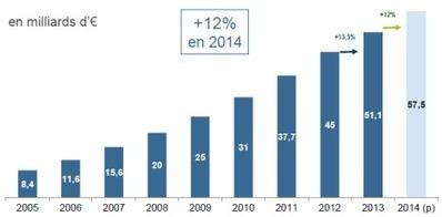 L'e-commerce français a atteint 51,1 milliards d'euros en 2013 | Logistique urbaine | Scoop.it