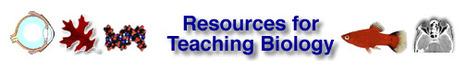 Resources for Teaching Biology | BMS: ScienceScoop | Scoop.it