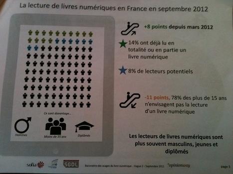 Lecture numérique : le nombre de lecteurs a doublé en France | Bib & Web | Scoop.it