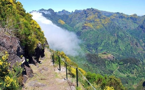 Madeira: walking on the wild side - Telegraph | Travel in Portugal | Scoop.it