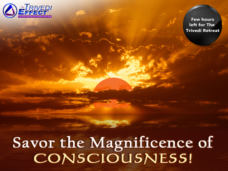 Relish the power of consciousness! | Wellness | Scoop.it