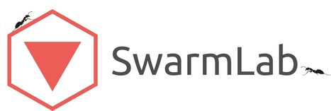 SwarmLab's Shiny webapps for teaching collective behavior and ... | Web Apps | Scoop.it