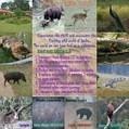 Events | Sahyadri Trekking | Scoop.it