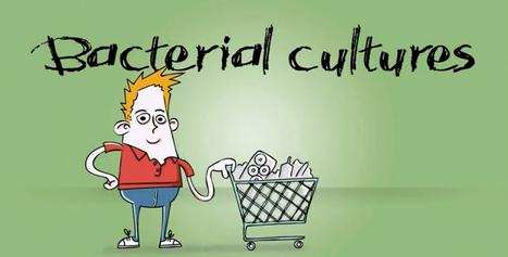 Microorganisms in food production | effca | Marvellous Micro-organisms | Scoop.it