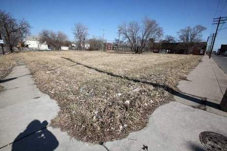 Vacant land auction in Detroit called a mistake | Vertical Farm - Food Factory | Scoop.it