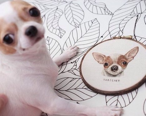 Hyperrealistic Pet Portraits Rendered with Up to 18 Hours of Exquisite Embroidery | Le It e Amo ✪ | Scoop.it
